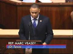 Rep. Veasey Salutes Delta Sigma Theta for 101 Years of Service
